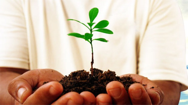 Managementul-mediului-inconjurator